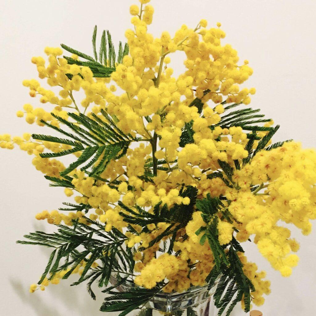 花粉の季節、目を擦っては危険!